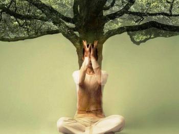 Поза дерева